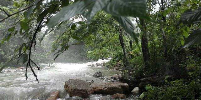 """澳纳森愿世间山河如同""""云深不知处一般美丽"""""""